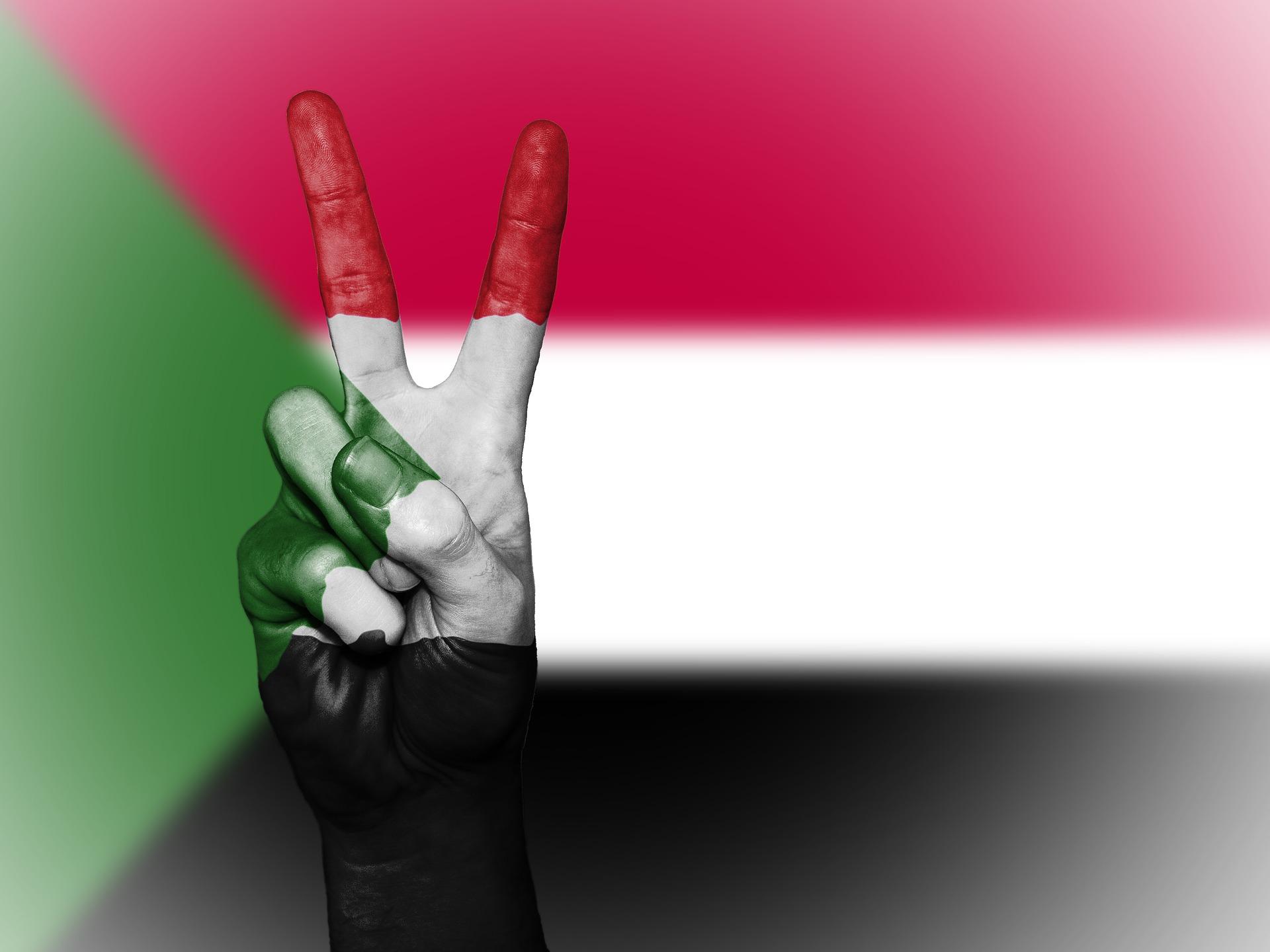 Legalizzazione consolare completa di documenti per il Sudan