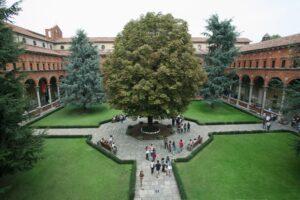 Новые курсы в Университете Каттолика
